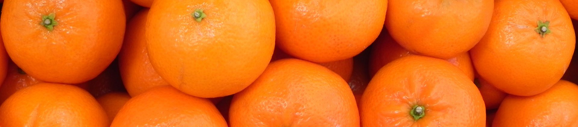 Chilean Clementines